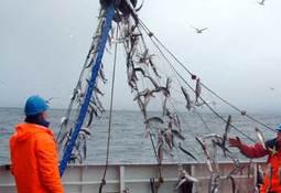 Streiken i havfiskeflåten er avblåst