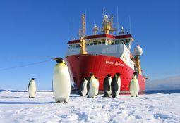 Miljøregler for polare farvann i havn