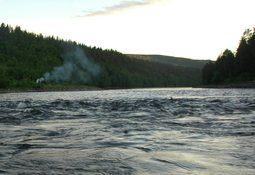 Nær 97 og 99 % villfisk i Alta- og Repparfjordelva