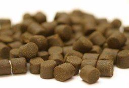 Nye anbefalinger på nivå av vitaminer i fôr til laks