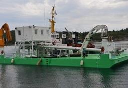 Dokumenterer fiskevelferd og luseeffekt