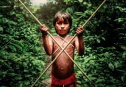 - Feil at produksjon av norsk fiskefôr fører til avskoging i Brasil
