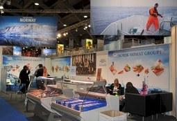 Omfattende sikkerhetsstiltak på plass til sjømattmessa i Brussel