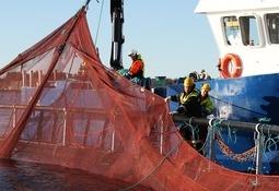 Aqualine ekspanderer med ny avdeling - godt fornøyd med 2015