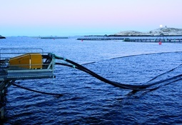 Det havbruksnæringen vet om utslipp av mikroplast fra fôrslanger