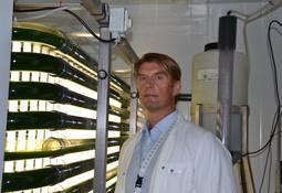 Las algas pueden ser una solución para el crecimiento de la salmonicultura