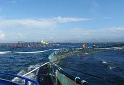 Ønsker å bygge forskningsenter for eksponert havbruk
