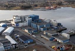 Biomar utvider fabrikk - investerer 450 millioner