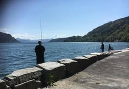 Påklager tillatelse for fiske etter oppdrettslaks i flere elver