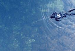 - Skal gjennomføre utfiske av rømt laks i 37 elver