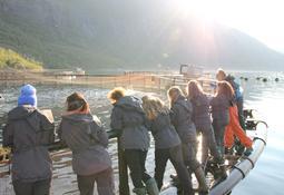 Kigok øker interessen for havbruk med Marincamp