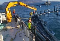 Aqualine lanserer ny type notlin tilpasset morgendagens oppdrett