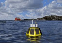 Kvarøy Fiskeoppdrett søker om fire utviklingstillatelser