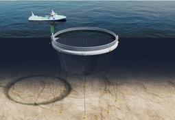 Nytt håp for Grieg Seafood sitt utviklingskonsept