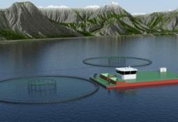 Aqua Star Invest søker seks utviklingskonsesjoner