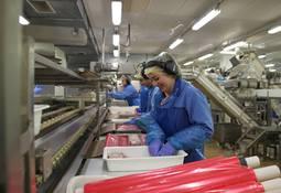 Fortsatt allmenngjøring for fiskeindustribedrifter
