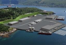 Nedlagt flyplass kan bli Nord-Norges lakseterminal