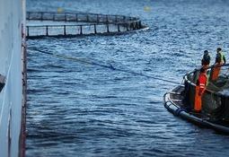 Norsk Fisketransport AS er blitt tenåring