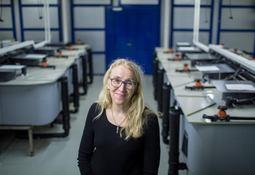 Veterinærinstituttet flytter inn i «blå» kunnskapsklynge
