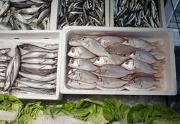 Få overskridingar for importert sjømat