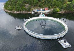 EU-finansiering til norske innovasjonsprosjekter er doblet