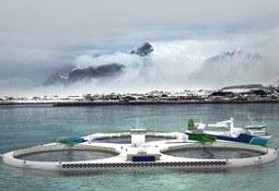 NSK Ship Design utvider innen havbruk
