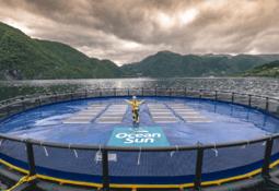 Vellykket emisjon i Ocean Sun - Klar for Merkur Market