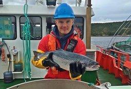 Berglund Andreassen går til Fishguard