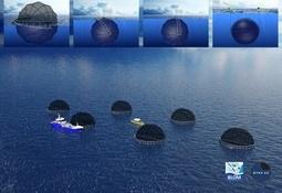 Enda et utviklingskonsept får nei fra Fiskeridepartementet