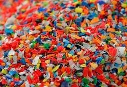 Dette vet man om mikroplast i sjø og fisk