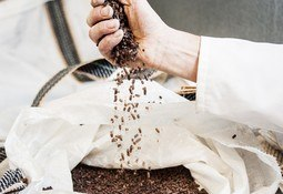 Calysta secures $40m funding for feed alternative