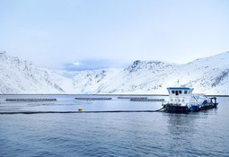 Easter shift dents Norway seafood exports