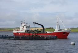Scots to double aquaculture output