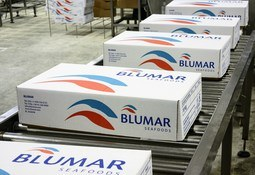 Malas condiciones sanitarias afectan resultados de Blumar