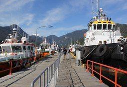 Navieras afirman que salmonicultura chilena encontrará equilibrio entre oferta y demanda