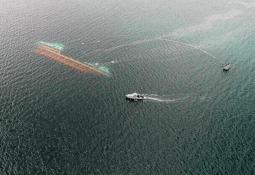 Piden retiro inmediato de wellboat siniestrado en Chiloé