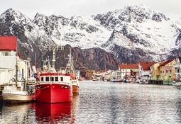 Precio del salmón noruego presenta nueva baja