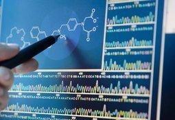 Modelo genómico esclarece funciones metabólicas de P. salmonis
