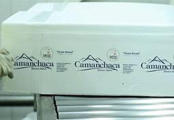 Camanchaca se hace parte de proceso por eventual colusión en alimento para salmón