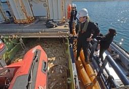 Rechazan recurso interpuesto por la pesca artesanal por vertimiento de salmones
