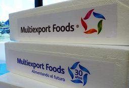 Salmones Multiexport suscribe crédito por US$250 millones