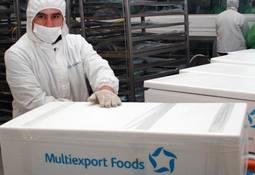 Filial de salmones de Multiexport Foods obtiene utilidades por US$ 61 millones