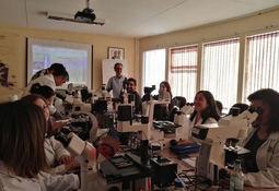 Experto español dicta taller sobre Biología Molecular en Microalgas Nocivas en IFOP