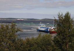 Presentan solicitud de caducidad de 66 concesiones acuícolas en la Región de Aysén