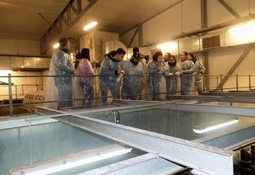 Alumnos extranjeros de la UMAG visitan piscicultura de Salmones Magallanes