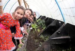 Escuela Rural Mañihueico recibe reconocimiento de Latinoamérica Verde por Eco-Invernaderos