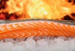 Demanda global por salmón sigue al alza