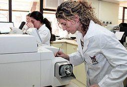 USACh abre concurso para promover redes de investigación