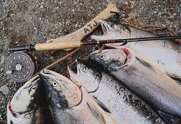 Amplían plazo para formular observaciones a propuesta de caladeros de pesca