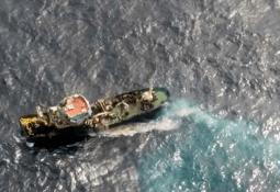 Primer aislamiento y caracterización de Tenacibaculum maritimum en Chile